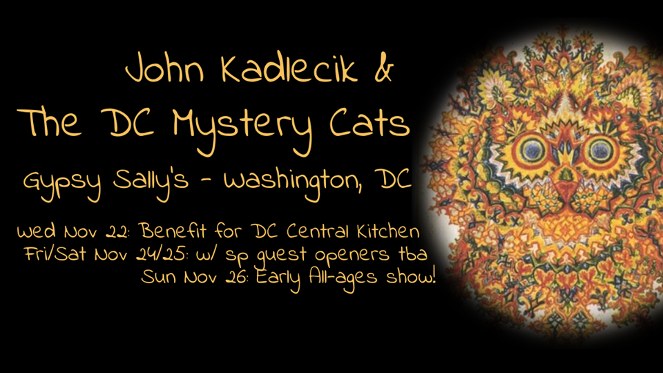 DC Mystery Cats - Turkey Run