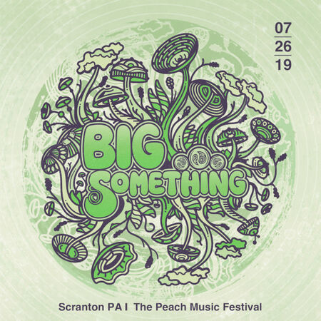 BIG Something The Peach Music Festival, Scranton, PA